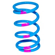 SLP High Performance Drive Clutch Springs
