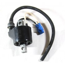 Arctic Cat Ignition Coil